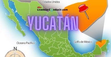 licencia conducir yucatan merida