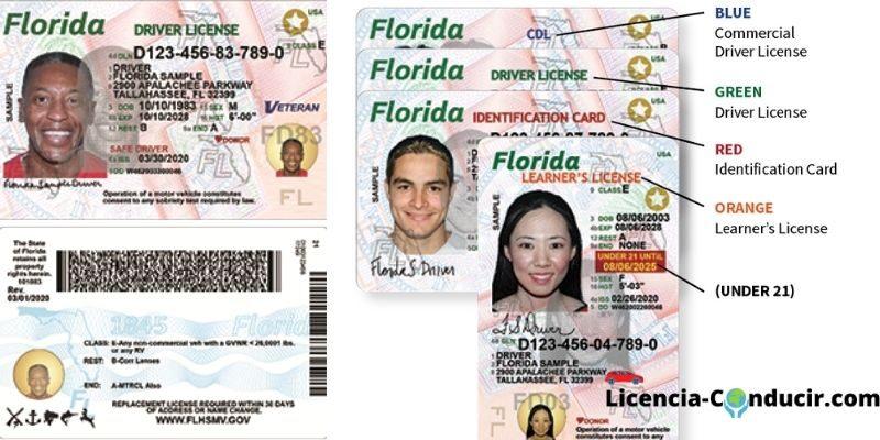 licencia de conducir florida